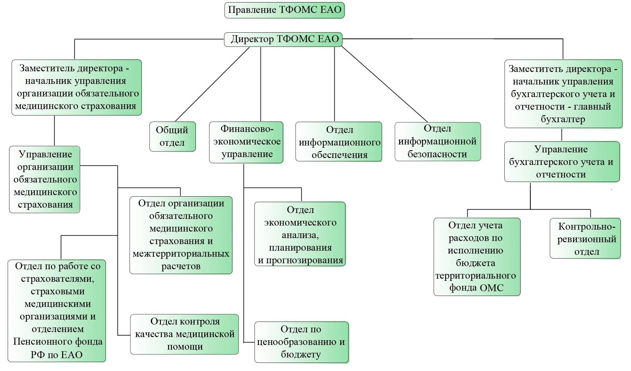 фонд обязательного медицинского страхования положение области